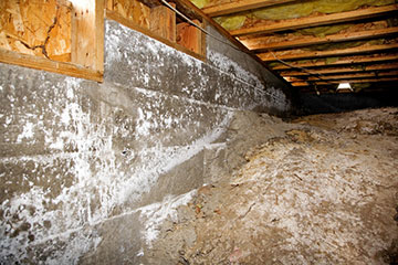 Five Signs You Need Crawl Space Repair